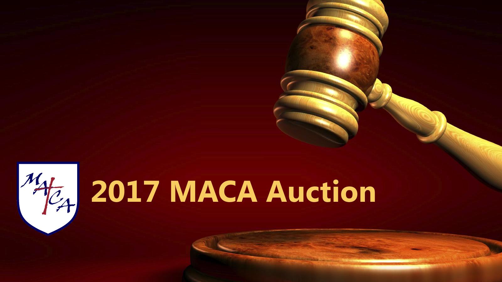 2017 MACA Auction