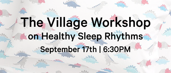 The Village Workshop on Healthy Sleep Rhythms logo