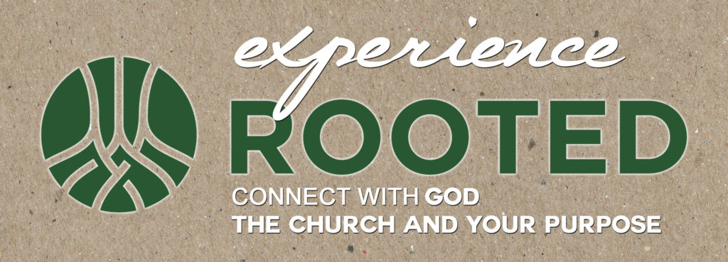 Rooted Winter/Spring Term logo