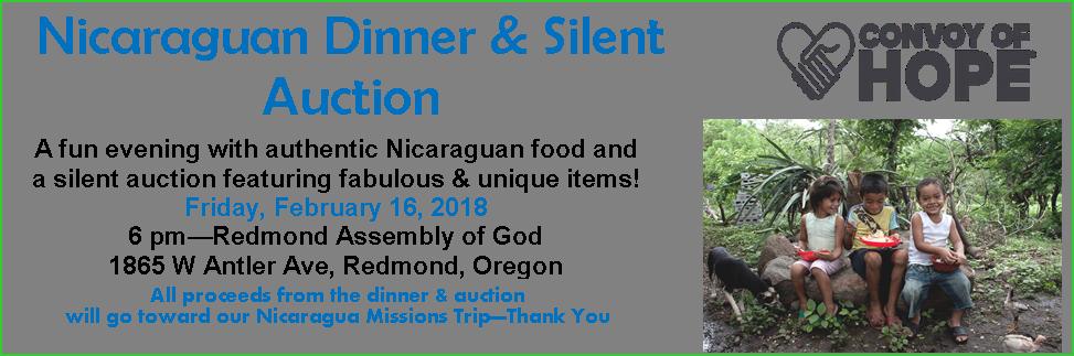 Nicaraguan Dinner & Silent Auction logo