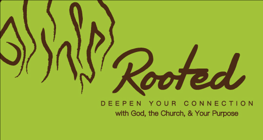 Rooted Book logo
